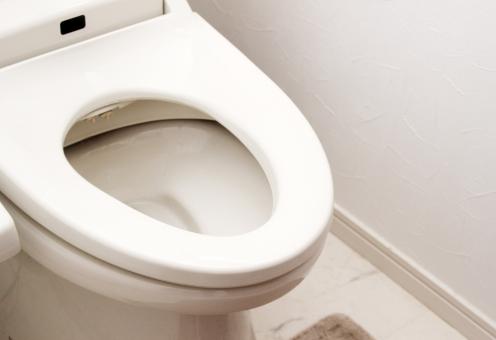 知っておきたいトイレ詰まりの原因と解決方法